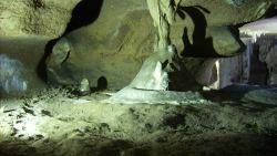 """Първите хомо сапиенс в Европа са обитавали пещерата """"Бачо Киро"""""""