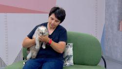 """""""Нашият следобед"""" с БСТВ (17.06.2021), гост: Д-р Таня Гетова, ветеринар"""
