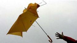 Жълт код за силен вятър в 10 области