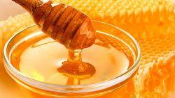 Медът e ефективен антибиотик