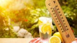 Оранжев код за опасни горещини в 9 области днес