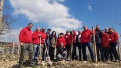 "БСП-Варна засади 40 дръвчета във ""Виница"""