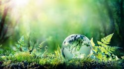 Шокиращ доклад разкрива пагубното влияние на Човека върху природата