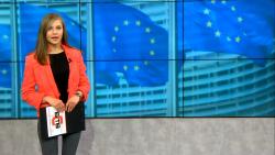 Провал на разяснителната кампания за Евроизборите за българите зад граница