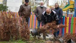 """След """"усвоени"""" 5,5 млн лева по европроект се оказва, че стотици дръвчета в Разград са засадени със саксиите"""
