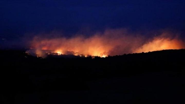 Военните се включват в гасенето на големия горски пожар в Свиленградско