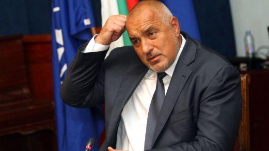 Коментар на Нора Стоичкова за обидите и нападките на премиера Борисов