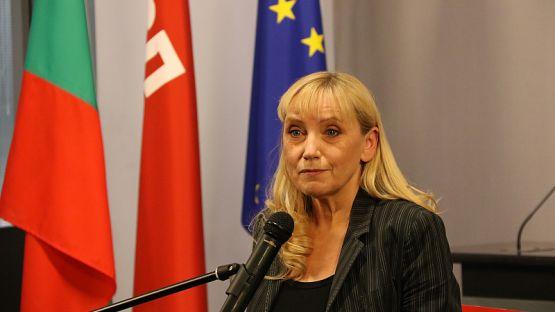 Елена Йончева: АПИ явно крие важни подробности за състоянието на българските пътища