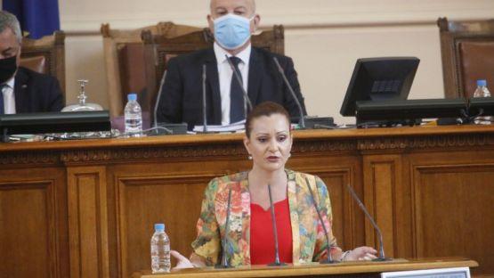 Виолета Желева: Законът за социалните услуги е един от най-големите провали в социалната сфера на това правителство