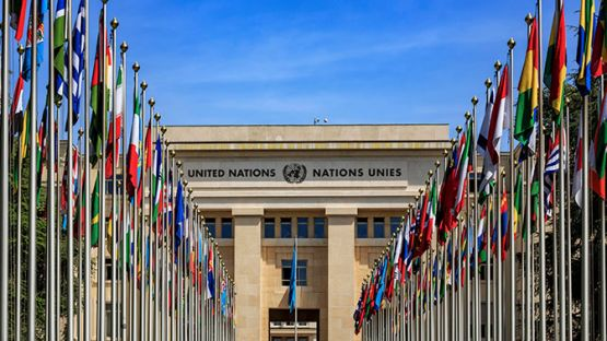 Съветът на Организацията на обединените нации блокира предложението на Русия да се обсъди новоприетия в Украйна закон за езика