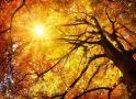 Днес ще е предимно слънчево, а температурите ще достигнат 22 градуса